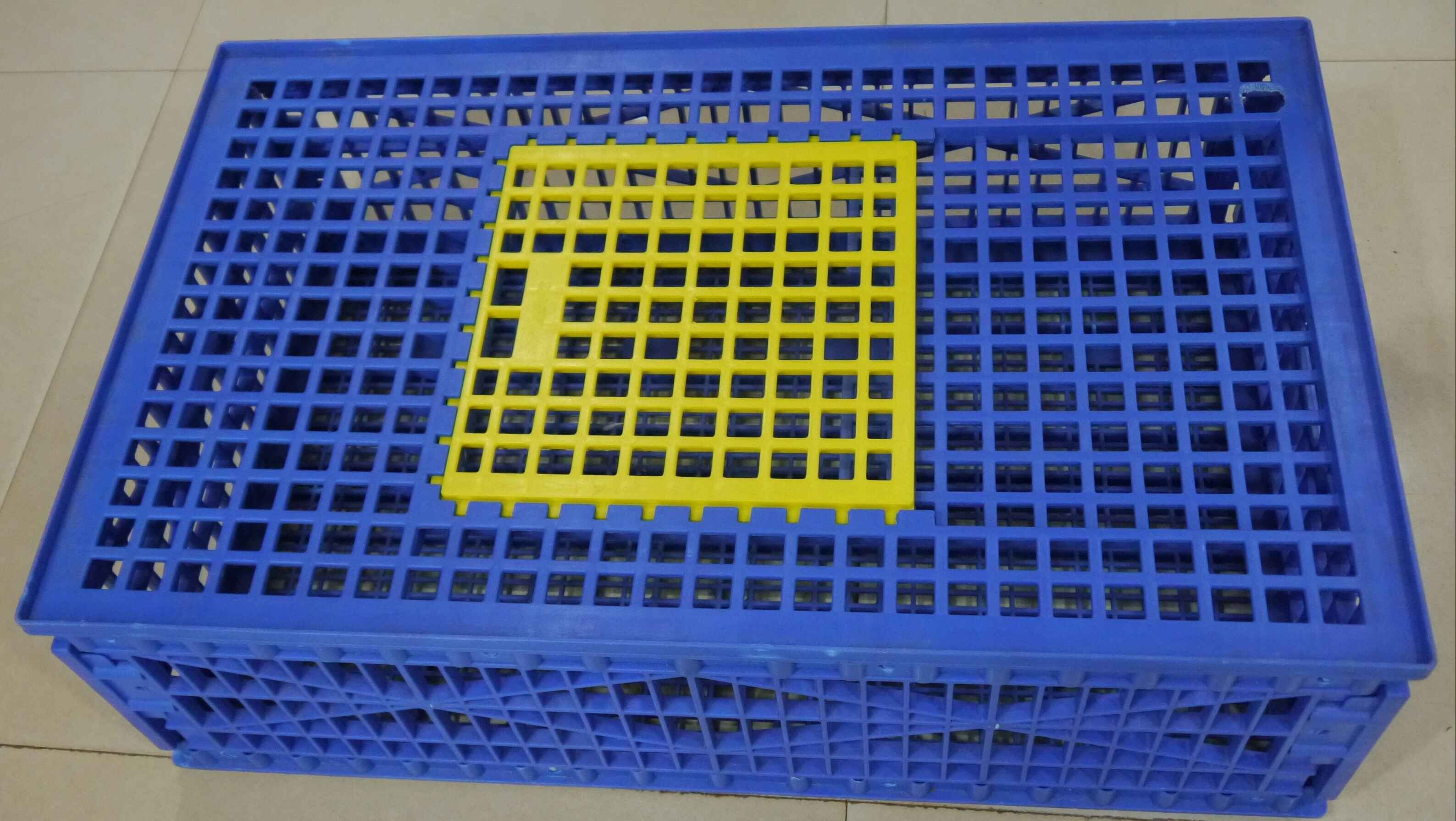 BIRDS TRANSPORT CAGE (1 box)