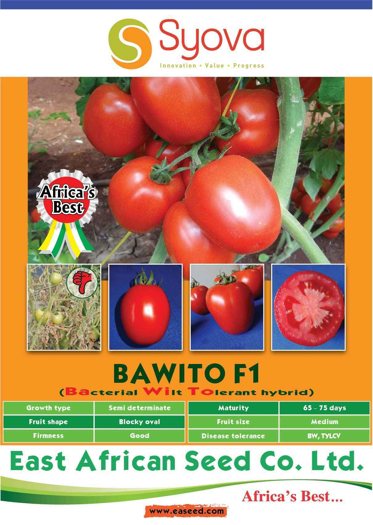 BAWITO F1 Hybrid Tomato Seeds