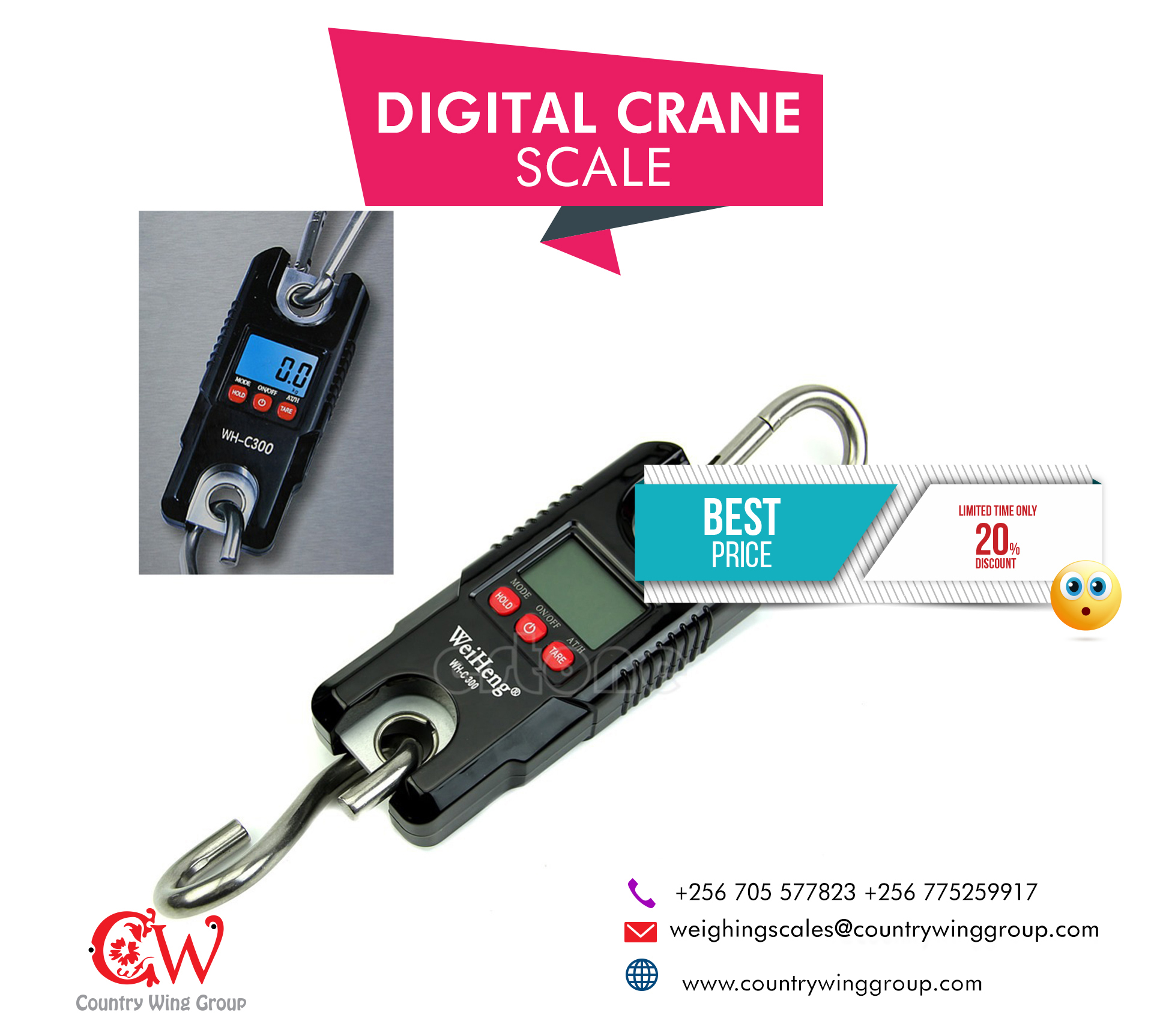 Crane/ Hanging scale, Portable Digital crane,300kg
