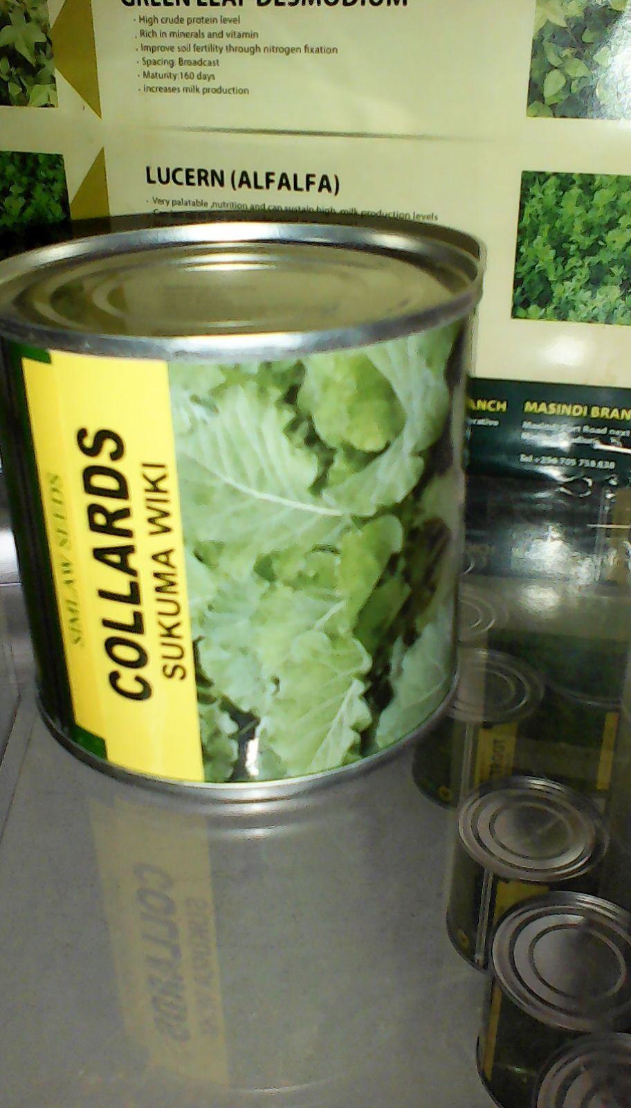 Collards - Sukuma Wiki Seeds (50gm)
