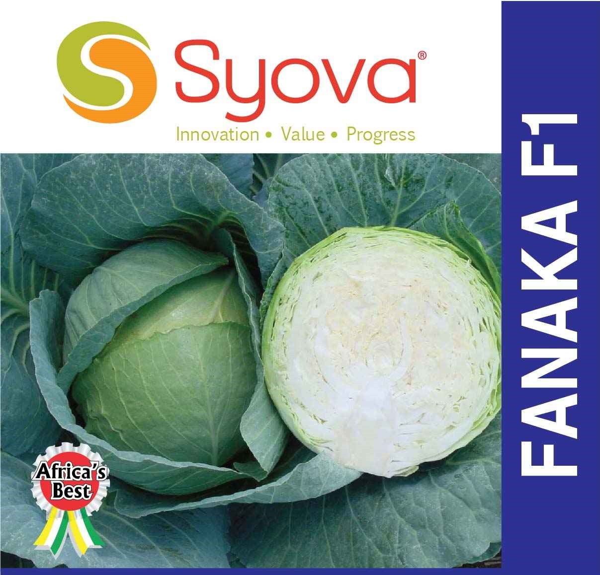 FANAKA F1 Cabbage Seeds (50gm)