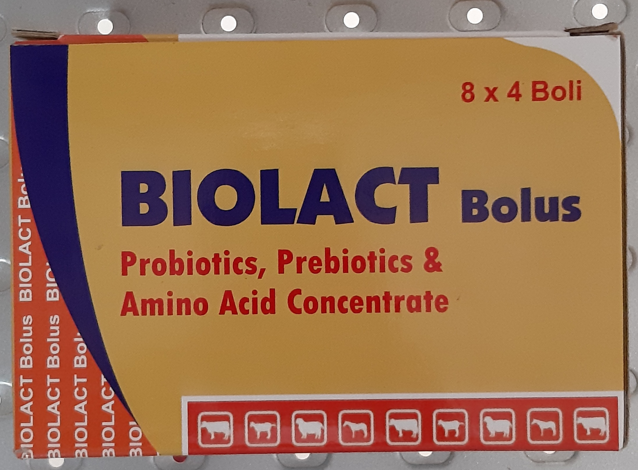 BIOLACT BOLUS (24 pieces)
