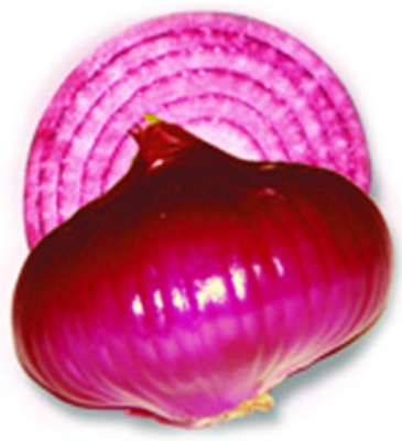 RED CREOLE Onion Seeds (250gm)
