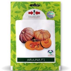 Arjuna Pumpkin Seeds (10gm)
