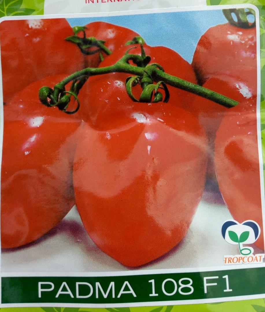 PADMA 108 F1 tomato seeds (10gm)