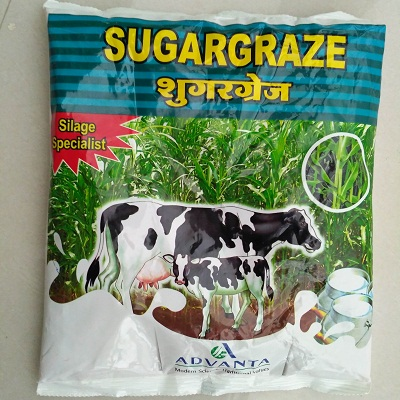 Sugargraze sweet sorghum seeds (1Kg)