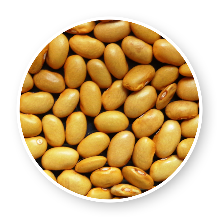Yellow beans produce (1Kg)